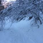 Chemin au dessous de la Cabanne de Salode