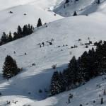Là, ya pas photo! Ces traces des skis sont superbes