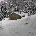 Cabane de Bisort